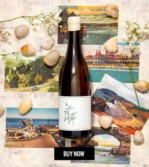 Arnot-Roberts Trout Gulch Chardonnay | Verve Wine