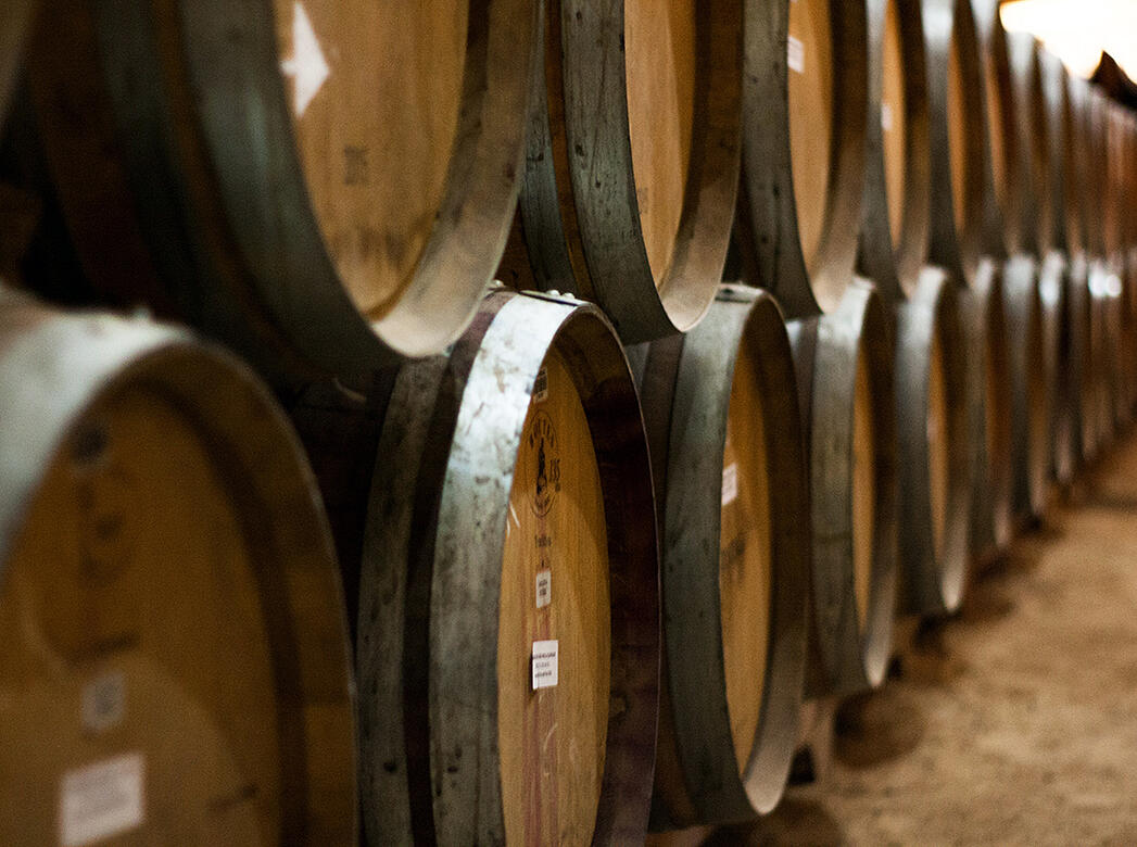 Barrels, Cement, and Tanks, Oh My! A Primer on Wine's Most Popular Vinification Vessels - Verve Wine