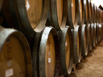 Barrels, Cement, and Tanks, Oh My! A Primer on Wine's Most Popular Vinification Vessels