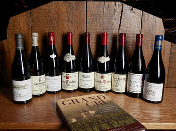 Six Tips for Approaching Burgundy Like a Pro