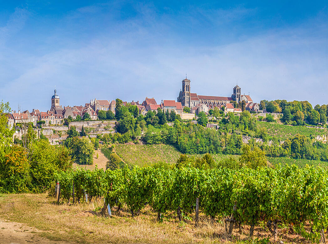 Breaking Down the Biggest Myths Around Burgundy