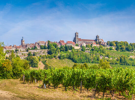 Breaking Down the Biggest Myths About Burgundy
