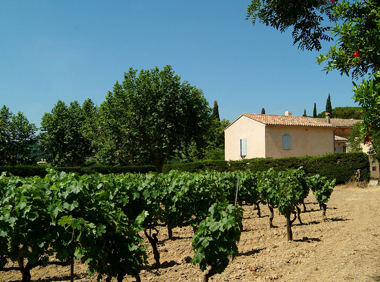 Producers We Love: Domaine Tempier   Verve Wine