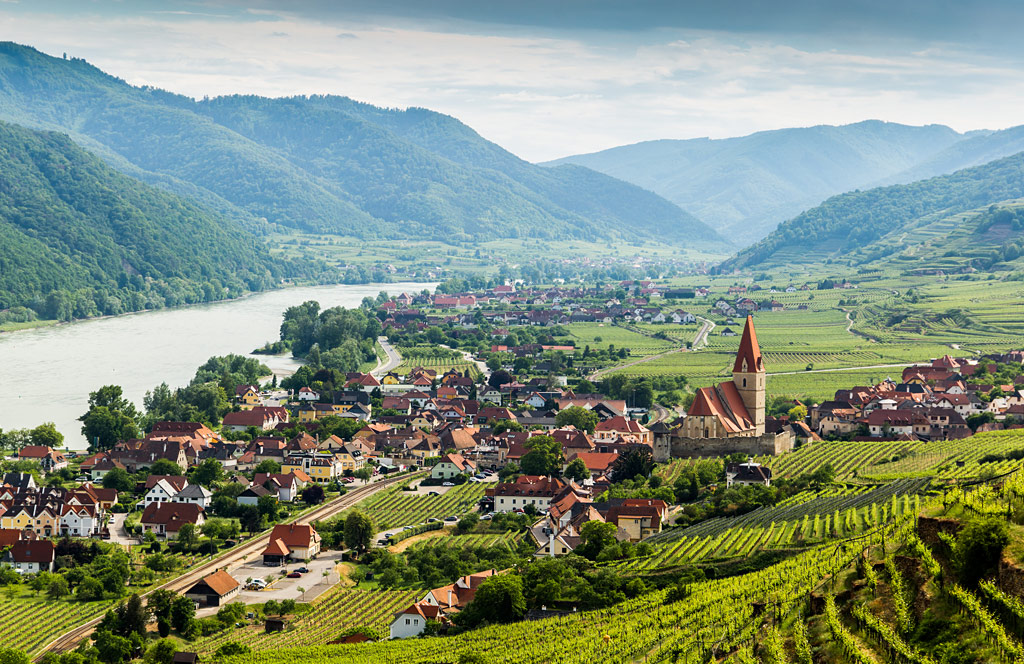 Get to Know Austria, Central Europe's Capital for Cool Climate Wines  | Verve Wine