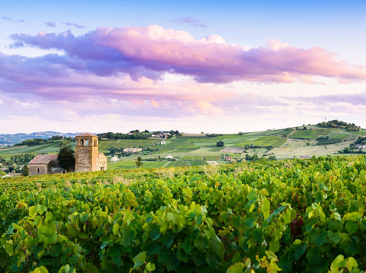 How Beaujolais Pioneered the Modern Day Movement for 'Good Wine'
