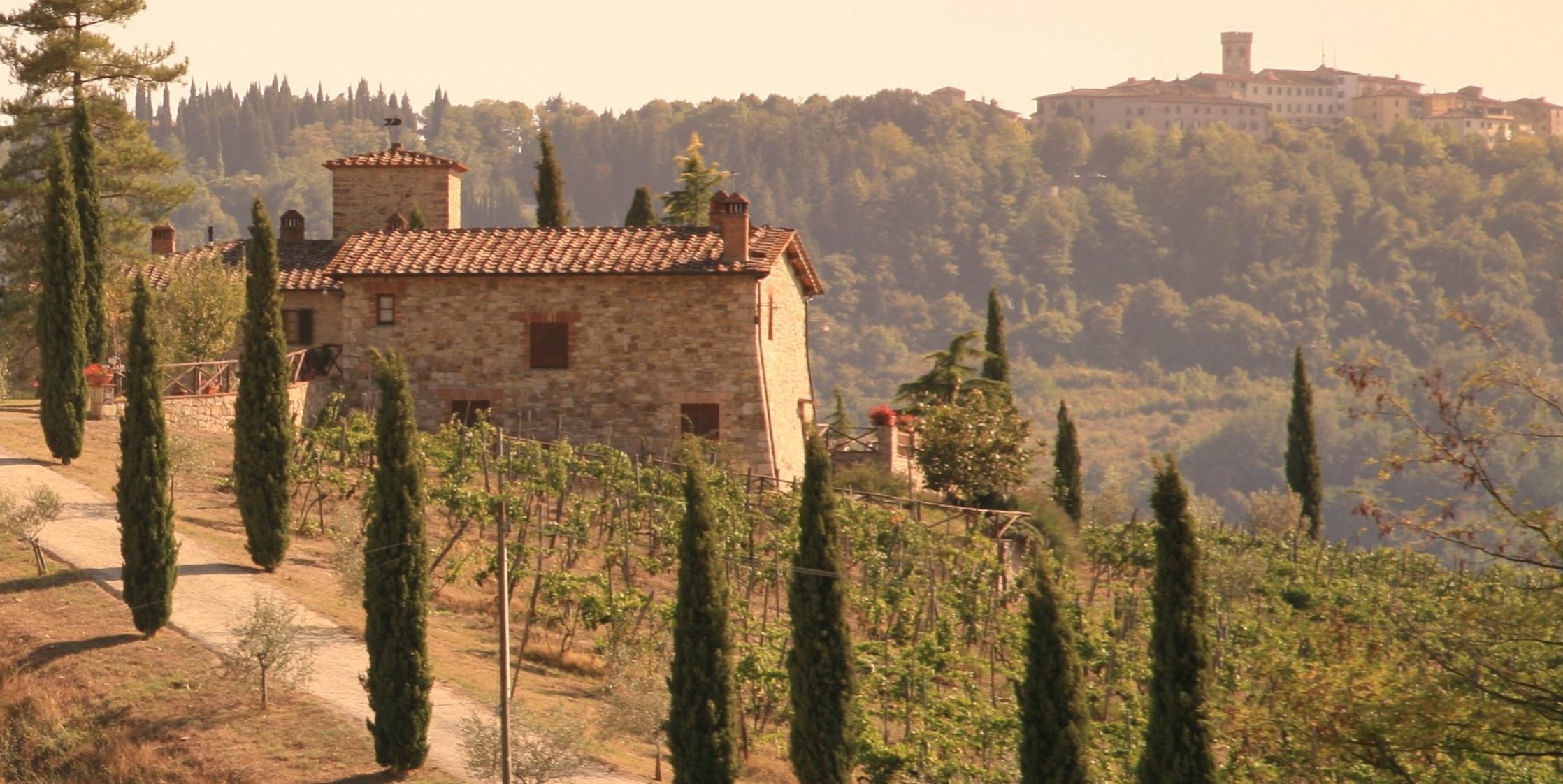Tuscany Wines | Verve Wine
