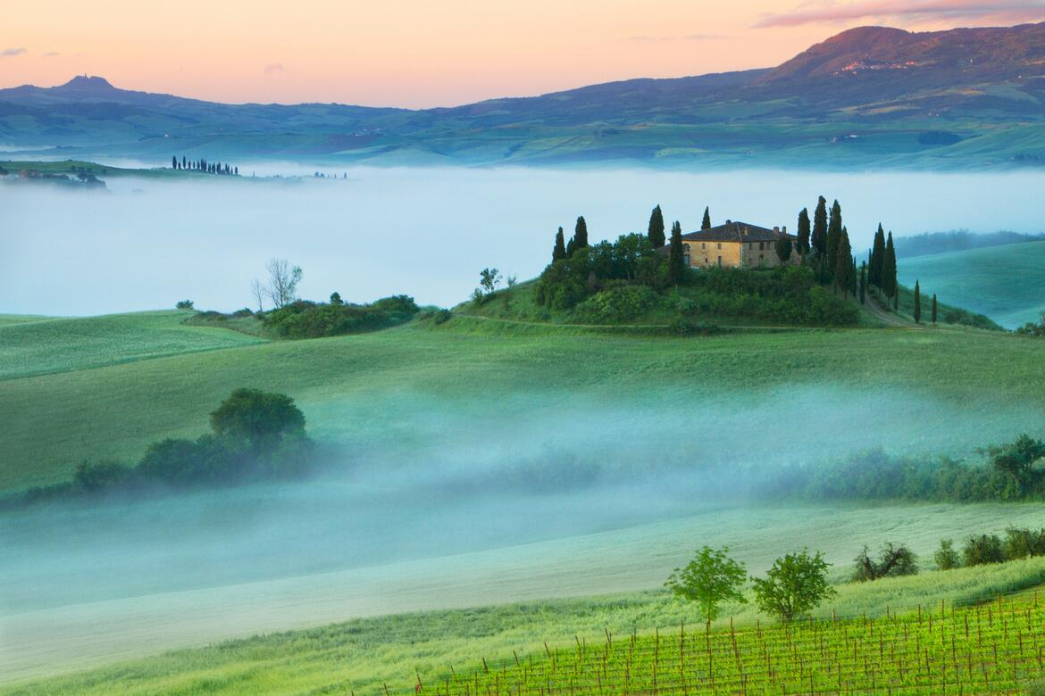 A Guide to Our Favorite Tuscany Producers | Verve Wine