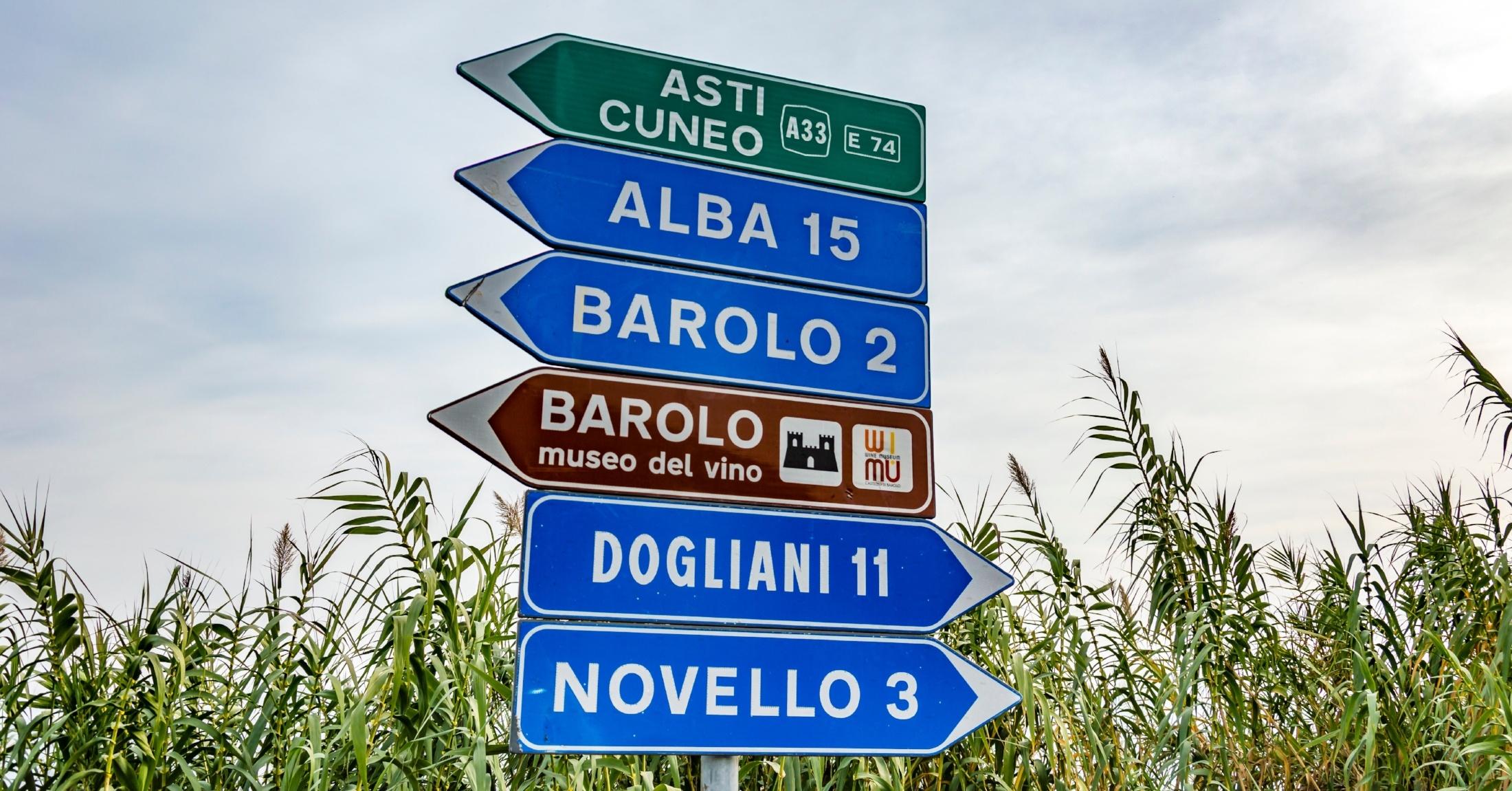 Piedmont Wines, Italy | Verve Wine