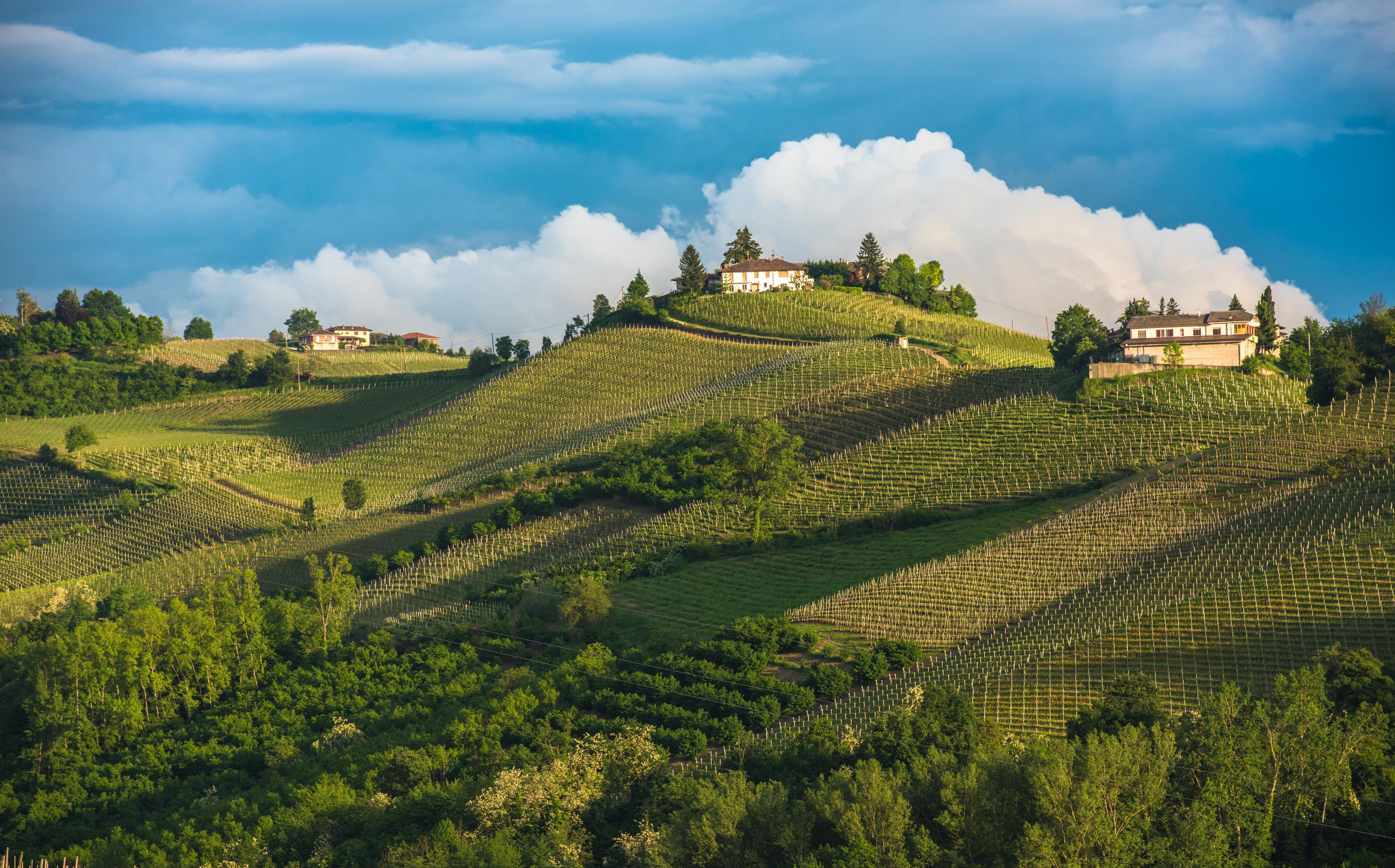 Map of Piedmont, Italy | Verve Wine