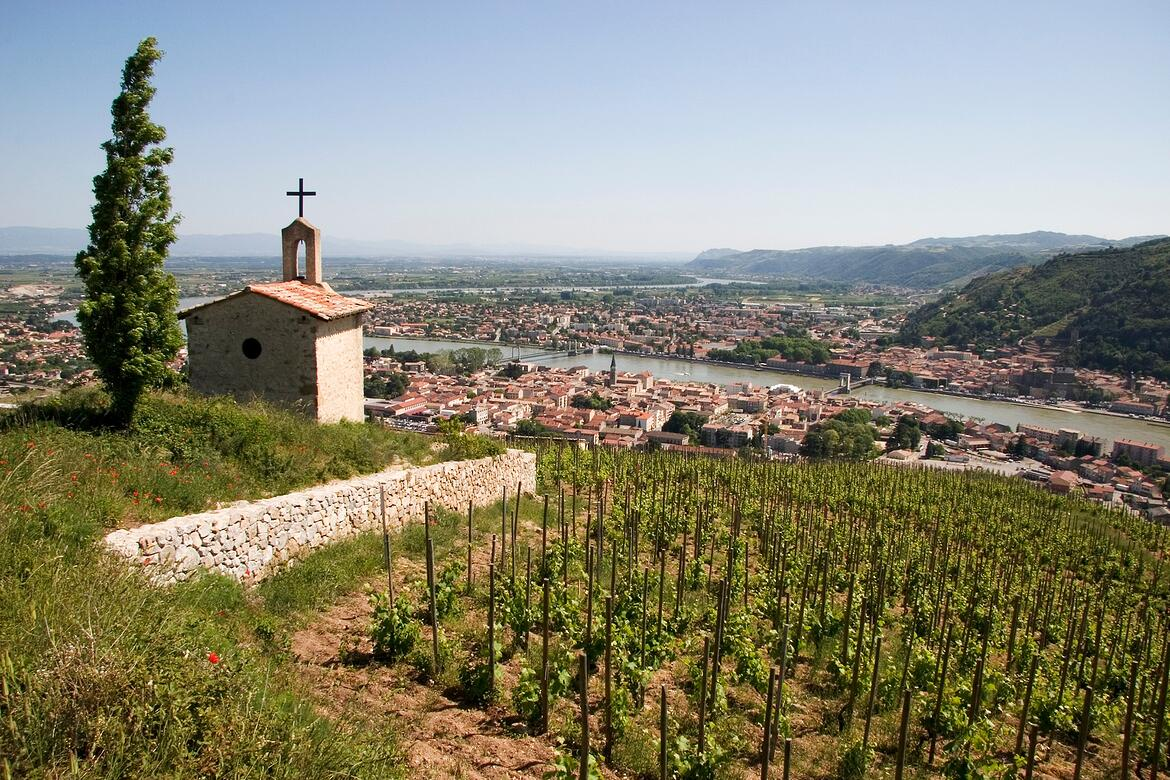 A Guide To Our Favorite Rhone Producers | Verve Wine