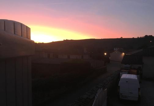 early morning sunrise over the vineyard