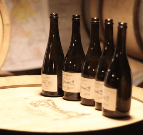 cellar tasting bottles