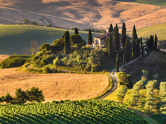 need-to-know-tuscany-thumb