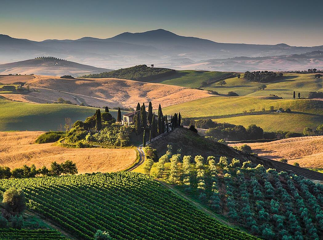 Discover Tuscany - Italy's Most Famous Wine Region | Verve Wine